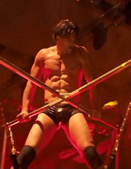 Magic Mike Sex Swing - 4