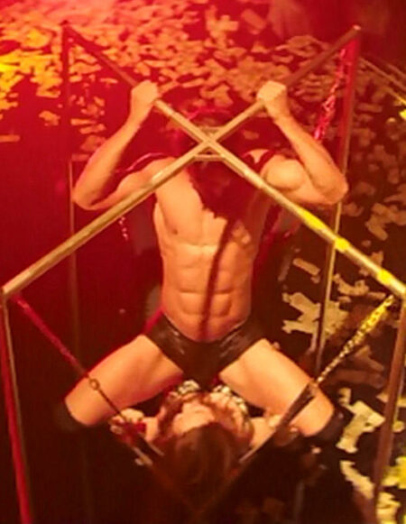 Magic Mike Sex Swing - 6